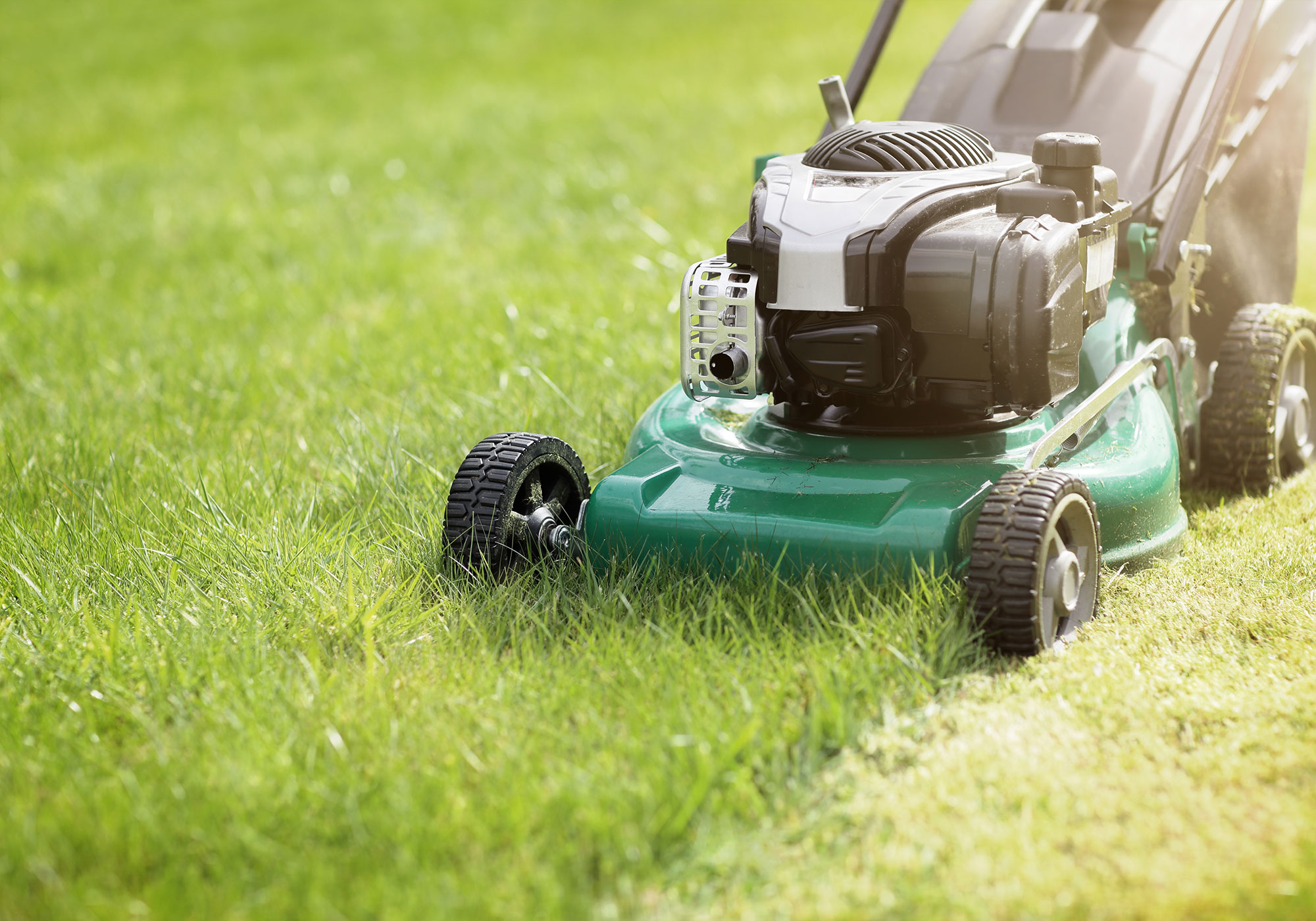 Instant Turf Melbourne - Instant Turf Diggers Rest - Buy Turf Online Diggers Rest